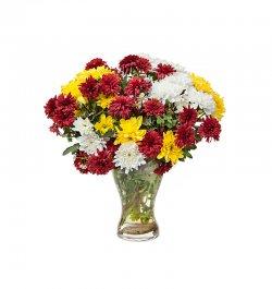 זר פרחים - חרציות צבעוני