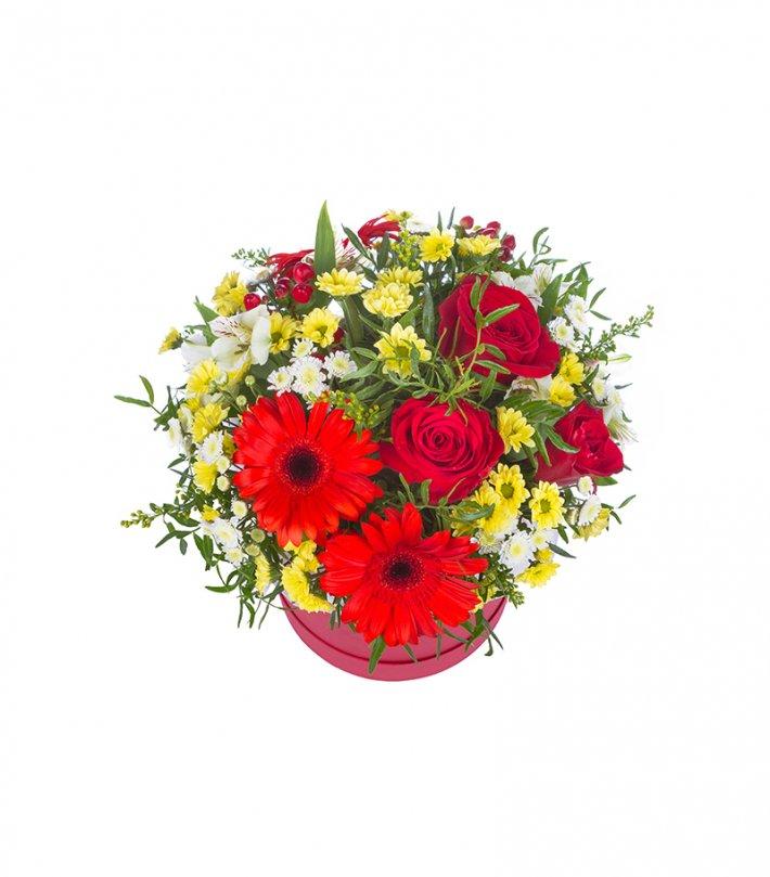 סידור גרברות, ורדים וחרציות